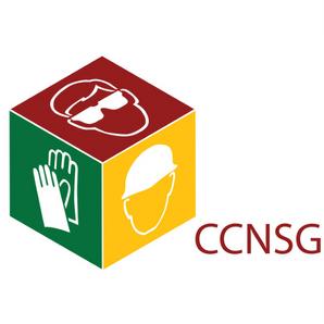 ccnsg renewal
